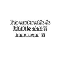 PR Clean bőrbarát dörzsanyag tartalmú kéztisztító 5000ml   (fprcl5000)